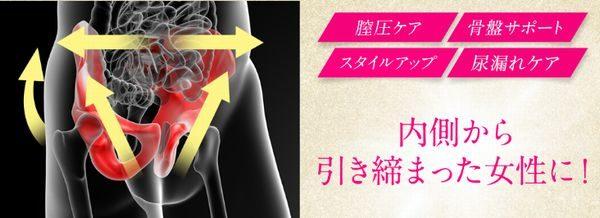 ibz着圧下着の骨盤サポートでちつトレ&尿もれ防止